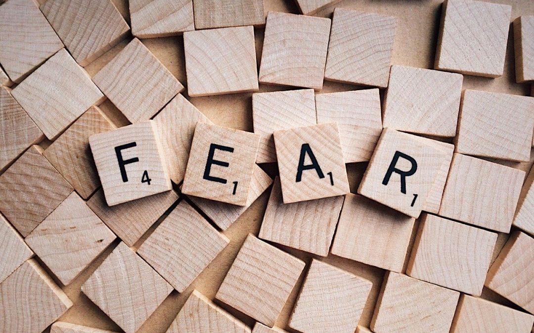 La paura: sentimento molto diffuso tra le freelance